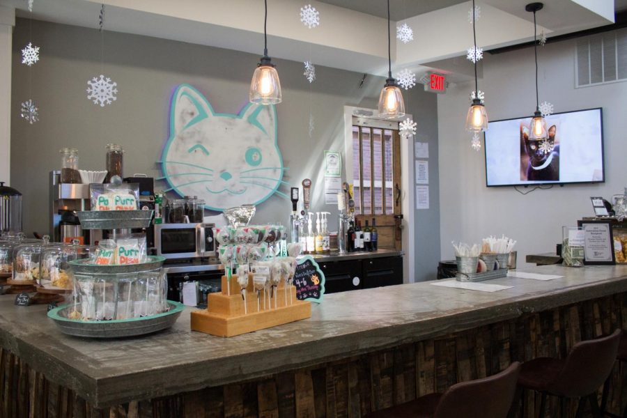 The+snack+bar+at+Purrfect+Day+Cat+Cafe+contains+an+assortment+of+cat+themed+treats+and+beverages.+%0A