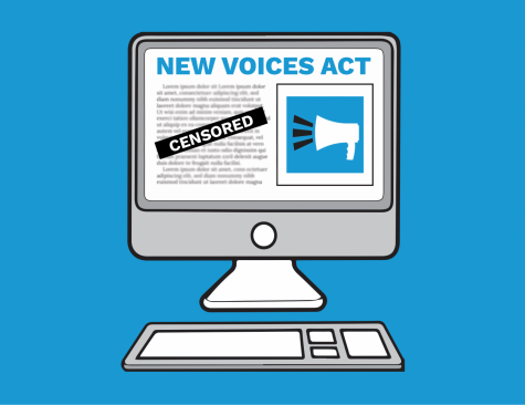 A Voice Behind the New Voices Act